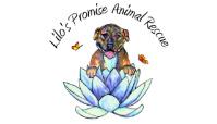 Lilo's promise Animal Care